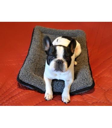 Tapis coussin pure laine pour chien et chat