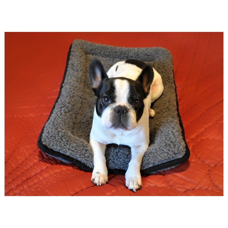 tapis coussin pour chien ou chat 50x70 cm chaud pure laine. Black Bedroom Furniture Sets. Home Design Ideas